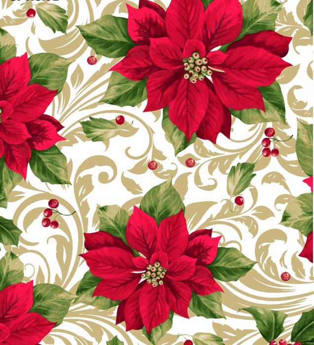 Seasonal Poinsettia